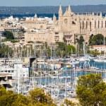 Palma de Mallorca port — Stock Photo