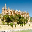 Cathedral La Seu in Palma de Mallorca — Stock Photo #36823121