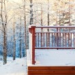 Stock Photo: Winter terrace