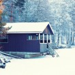 Winter house — Stock Photo #39314087