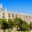 Cathedral La seu — Stock Photo