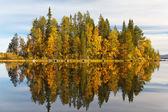 Höstlandskap med en reflektion i sjön — Stockfoto