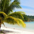 Beach on the Koh Kood island, Thailand — Stock Photo