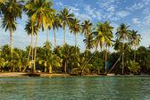 Beach on the Koh Kood island, Thailand — Stock Photo