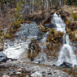 Small waterfall in spring forest — Stock Photo