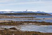 La côte de la mer blanche à marée basse dans le printemps, la péninsule de kola, r — Photo