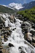Rapid stream — Stock Photo
