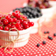 Wild berries in bowls - Stock Photo