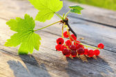 Redcurrant on wooden table — Stock Photo