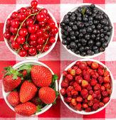 Wild berries in bowls — Stock Photo