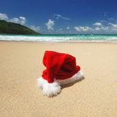 熱帯クリスマス — ストック写真