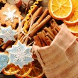 Christmas homemade gingerbread cookie and spices — Stock Photo #14050512