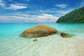 Beautiful beach — ストック写真