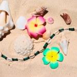 Beach still-life — Stock Photo #1717474