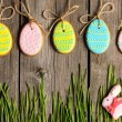 Easter homemade gingerbread cookie — Stock Photo #21041233
