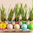 colored easter eggs — Stock Photo #21613127