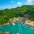 Portofino village on Ligurian coast, Italy — Foto de Stock