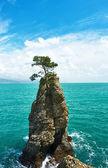 Ligurian coast in Italy — Stock Photo