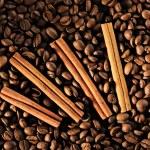 Coffee beans and cinnamon — Stock Photo #2951890