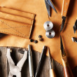Leather crafting tools — Stock Photo #29868691