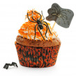 Halloween cupcake — Stock Photo #31239195