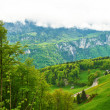 Stock Photo: Swiss Alps
