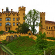 Castle of Hohenschwangau in Germany — Stock Photo #32543213