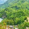 Stock Photo: Landscape with castle of Hohenschwangau in Germany