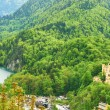 Landscape with castle of Hohenschwangau in Germany — Stock Photo #33054605
