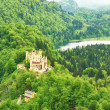 Castle of Hohenschwangau in Germany — Stock Photo #33501189