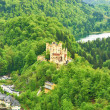 Stock Photo: Castle of Hohenschwangau