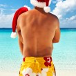 Stock Photo: Couple in santa's hat on a beach