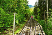 Funicular rail near Reichenbach — Stock Photo