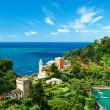 Portofino village on Ligurian coast, Italy — Stock Photo #35959579
