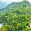 Landscape with castle of Hohenschwangau in Germany — Stock Photo #36204971