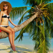 Woman sitting on a palm tree at tropical beach — Stock Photo #41644869
