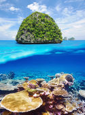 Uninhabited island with coral reef underwater view — Foto Stock