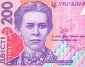 Money Ukraine — Stock Photo