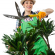Womgardener trimming plans on white — Stock Photo #12546137