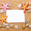 Sea stars isolated on the white — Stock Photo