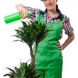 Girl watering plants on white — Stock Photo