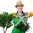 Womgardener trimming plans on white — Stock Photo #12847250