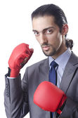 Empresario en concepto de boxeo en blanco — Foto de Stock