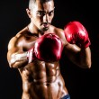 Royalty-Free Stock Photo: Young man with boxing gloves
