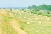 Veld met rollen van hooi op zomerdag — Stockfoto