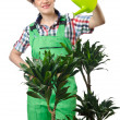 Woman watering plants on white — Stock Photo #13410933