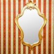 Ornate mirror on the wall -  