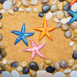 Sea stars and pebbles on sand - Stock Photo