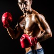 Stock Photo: Young man with boxing gloves