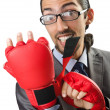 Handsome businessman with boxing gloves — Stock Photo #14049597